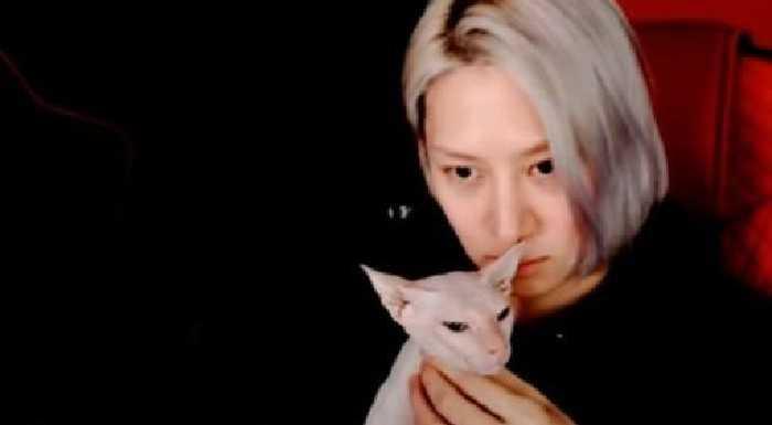 Kim Heechul, Sulli'nin kedisini sahiplendiğini açıkladı