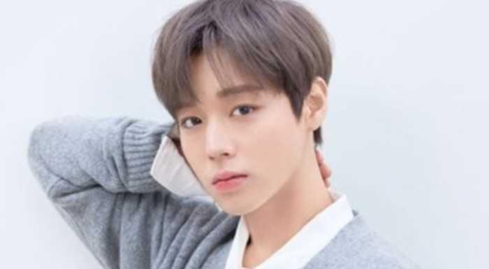 Park Jihoon hakkında dedikodular uyduran kişi ceza aldı